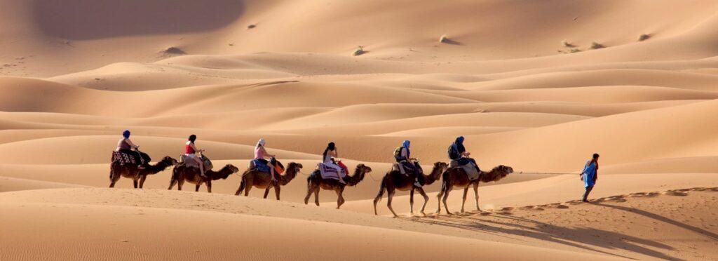 Excursion en Camello Desierto